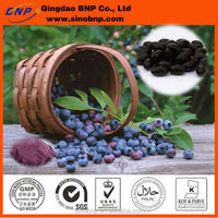 Sells GMP High Quality 100% natural acai berry capsules