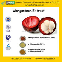 GMP Certified Manufacturer Supply High Quality Mangosteen Rind Extract