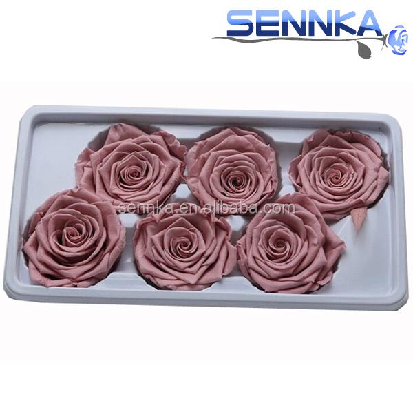 Yunnan Sennka Preço de Fábrica Flor Preservada Preservada Rosas Do Equador Atacado
