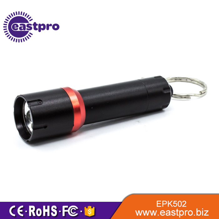 Deliver timely top promotion gift lighted keychain