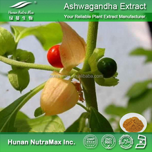 Factory supply Ashwagandha extract/Withanolides 5%/Ashwagandha powder/Pain relieve plant extract
