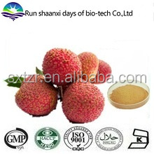 ISO Factory Supply Natural Lychee Seed Extract, Litchi Powder