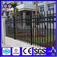 cheaper two rails and double top rails decorative spear top metal fence