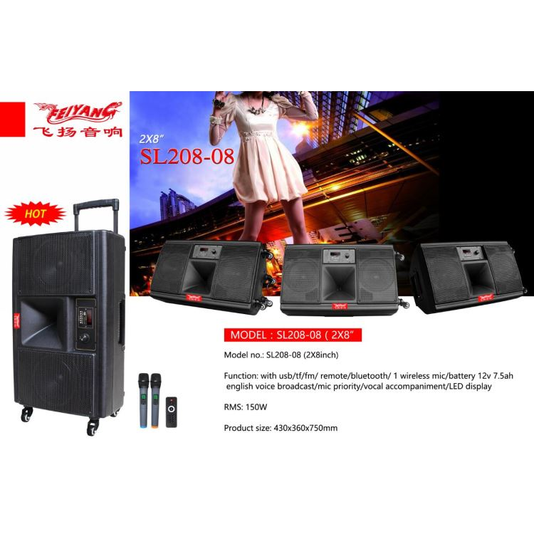150W Rechargeable Trolley speaker in Temeisheng feiyang factory with cheap price 2X8inch