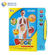 Factory directly human body kids educational learning toys