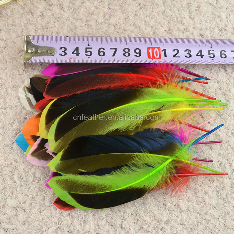 Factory Direct sale 10-15cm beautiful Dyed duck feathers