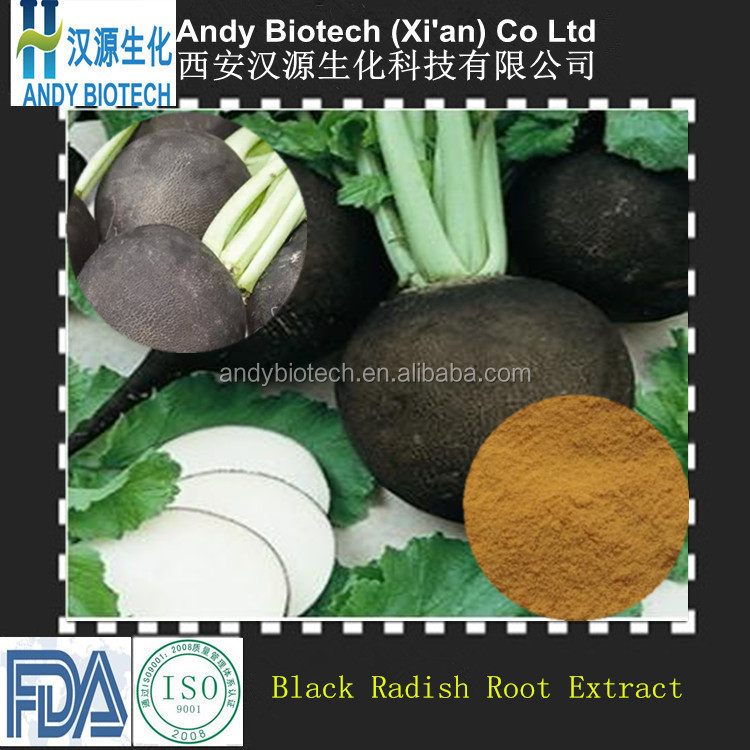 Free Sample High Quality Black Radish Root Extract