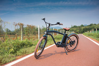 chopper beach cruiser electric bicycles with aliminum alloy frame