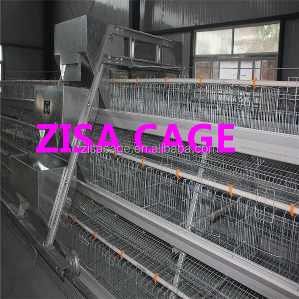 120 birds /cage poultry eggs chicken layer battery cages for sale in africa market