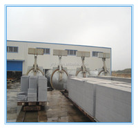 Autoclaved aerated concrete Fly ash AAC block machine plant and price