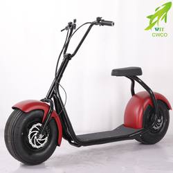 Hidden battery DIY 2 seat full size electric motorcycle
