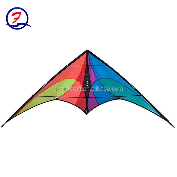 New delta kite/promotional kite/triangle kite funny design kites promotional kites