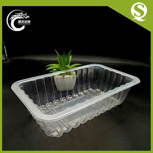 Safe cheap blister packaging plastic disposable frozen food tray for fresh fruit