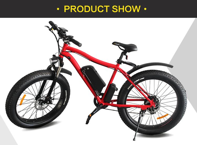 TDE-01 outdoor cycling go electric 26'' 4.0 fat tyre Mountain E-bike 2018