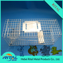 Hot Sale Collapsible Metal Wire Mesh Animal Cage Mouse Squirrel Fox Trap