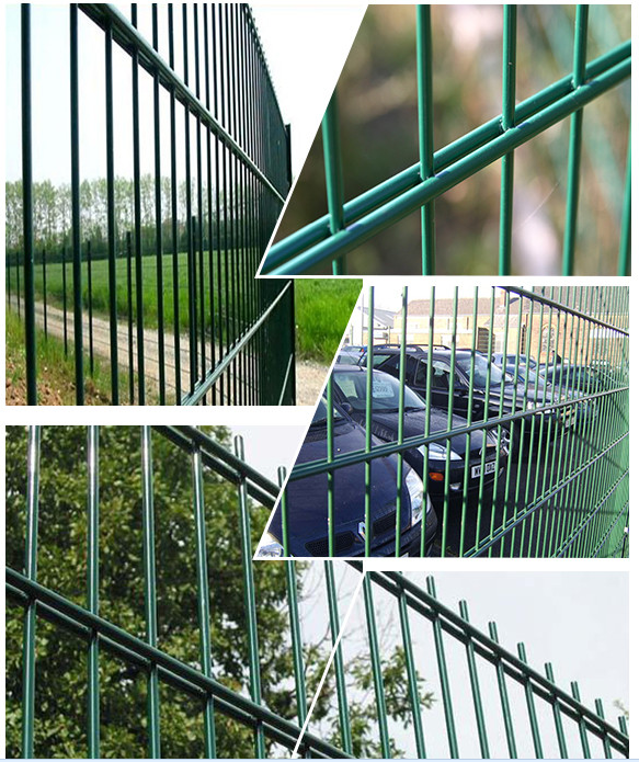 Strong 868 656 double wire fence