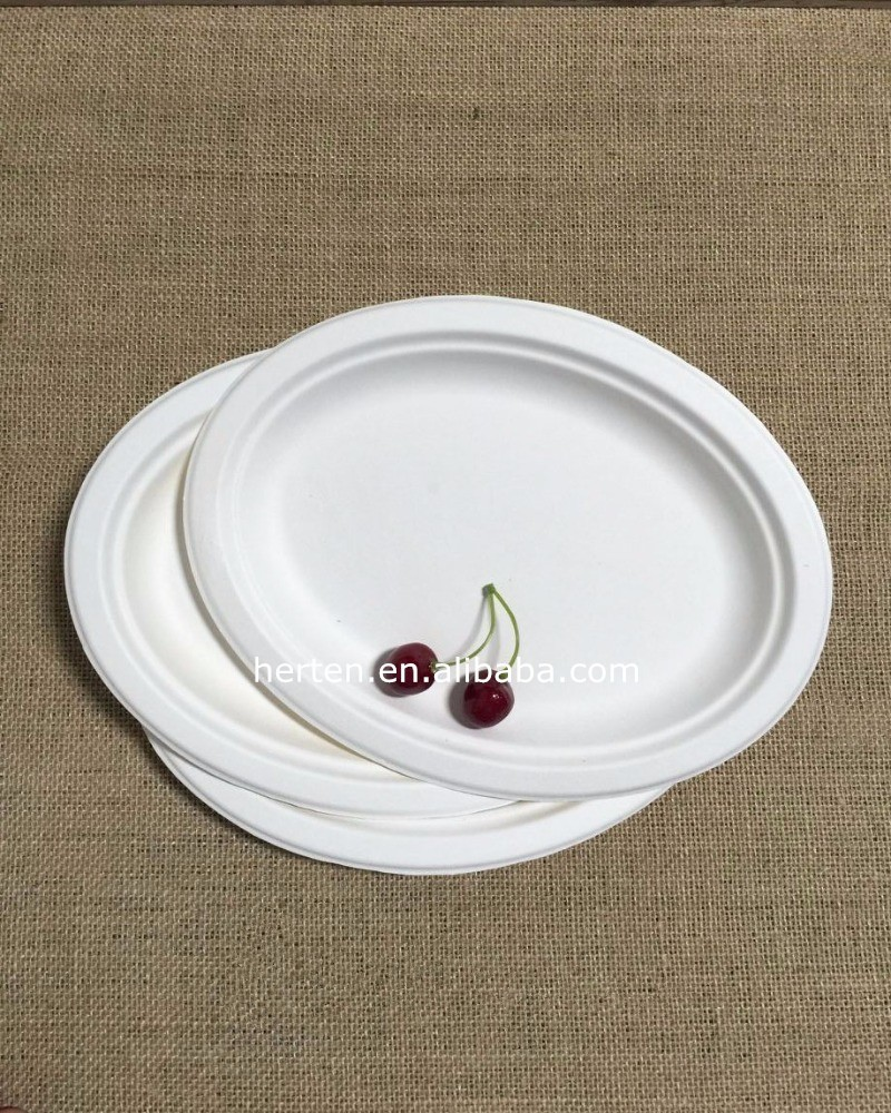 Alibaba high quality Popular 7inch sugarcane fast food plate