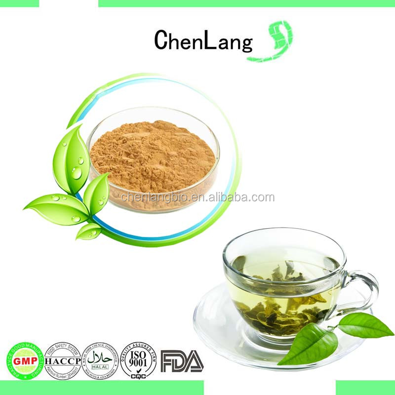 ISO Certified EGCG Green Tea Extract Powder 10%~98%