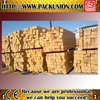 Russia White Birch Lumber