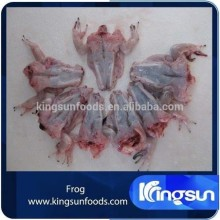 High Quality Frozen Fresh Frog Leg For Sale