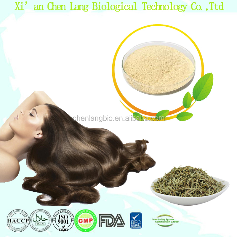 Shopping Plant Extract Powder With Top Quality For Healthcare Rosmarinic Acid