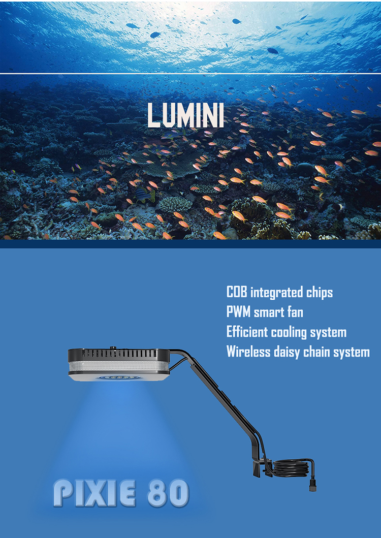 Chinese Rohs Intelligent Programmable Wifi App Control Full Spectrum 60Cm Marine Reef Led Aquarium Light For Fish Coral Tank