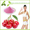 100% organic fruit with professional design acerola cherry fruit extract powder