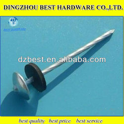 9gauge ring shank umbrella head galvanized roofing iron nail with washer