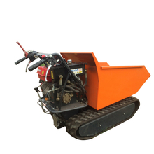 Good sales China CE site dumper for transportation
