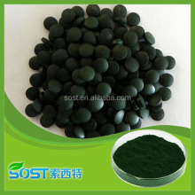 Plant extract single-celled algae 65% protein chlorella powder in bulk