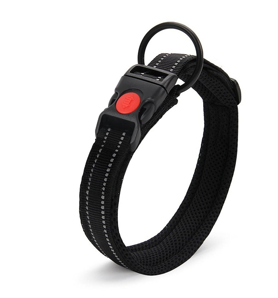 Nylon Double belt buckle dog collar