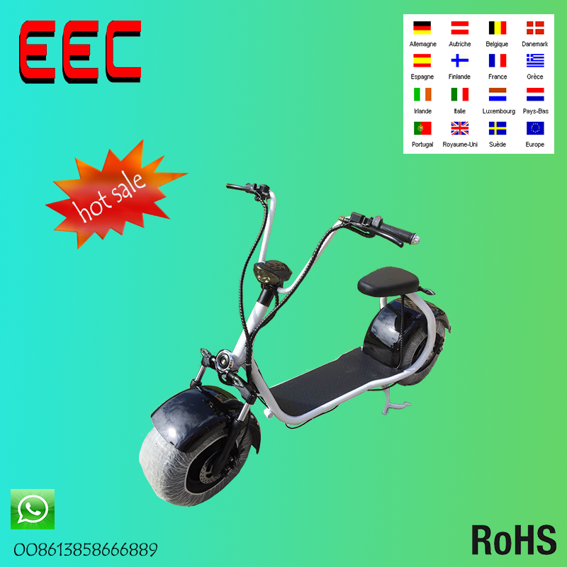 Professional 1500w two wheels electric scooter with EEC certificate scrooser citycoco