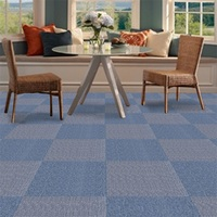 Cheap Commercial Carpet Outdoor Rubber Backed
