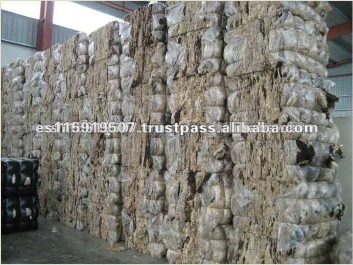Spain High Quality and Best Quality Dirty Wool