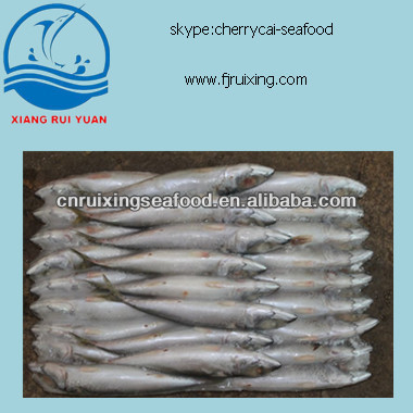 Frozen whole A Grade Scomber Scombrus Pacific Mackerel,Frozen Mackerel Fish Suppliers