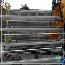 hot selling Multi-tier hot galvanized chicken cage in south africa Poultry Farm Design Layout For Chicken House