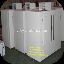 Gas Station Cold Wall Ice Storage Freezer with CE/RoHs Certificates
