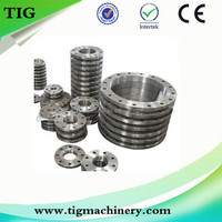 Customized Stainless Steel Casting Spare Parts SS304 Flanges
