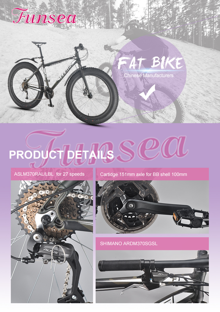 "Professional custom 26"" aluminum alloy frame all kinds of size price men beach cruiser fat tyre bicycles fat bike from Funlake"