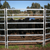 popular livestock fence,rural breeding livestock fence,ce hot sale cheap farmland/livestock fence
