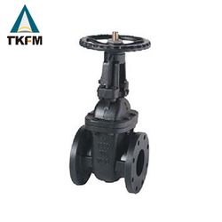 TKFM DN100 PN40 din cast iron spindle of gate valve