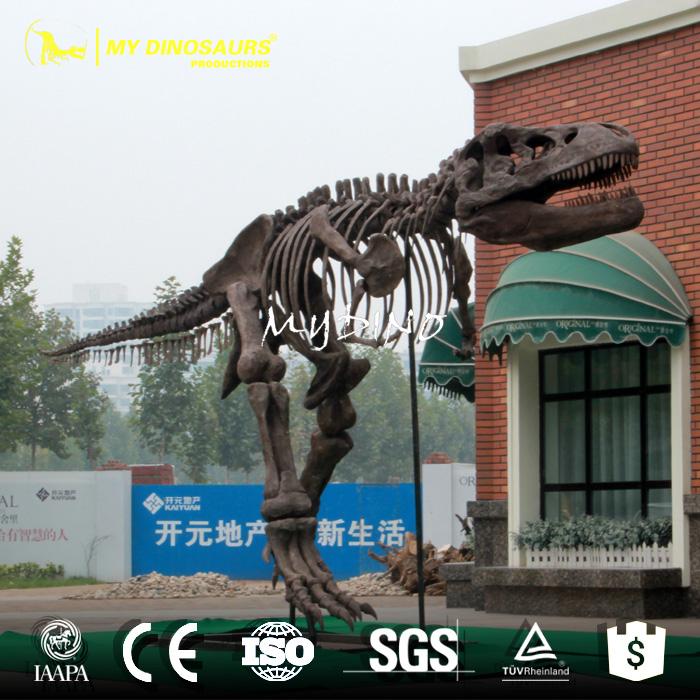 skeleton model1.jpg