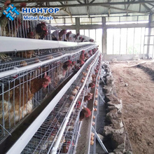 high quality chicken layer egg cage /poultry farm house design