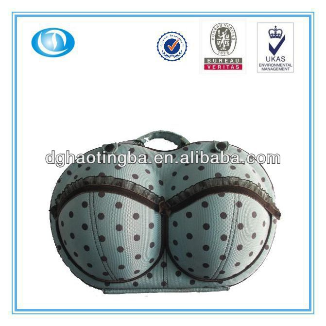 LT-MR4161 protective carrying bra storage bag