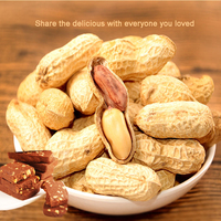 Sale Chinese famous brand dried unsalted raw groundnut peanut with good price