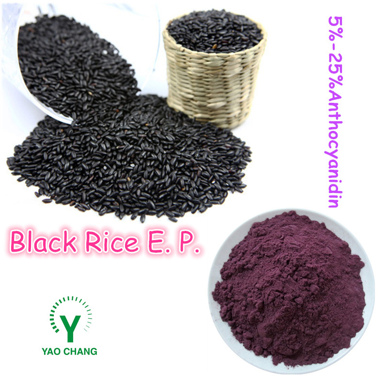 Purple Natural Black Rice Extract Powder 25%