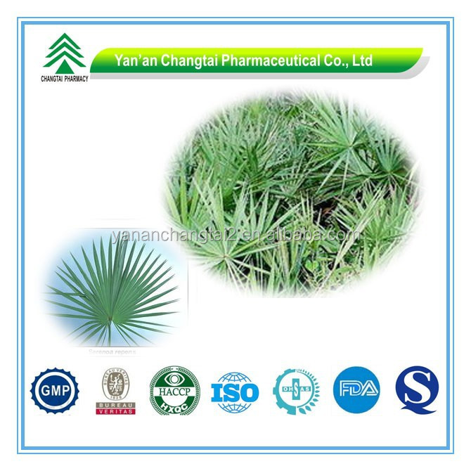 GMP Certificate Popular Herbal Saw Palmetto P.E. By UV