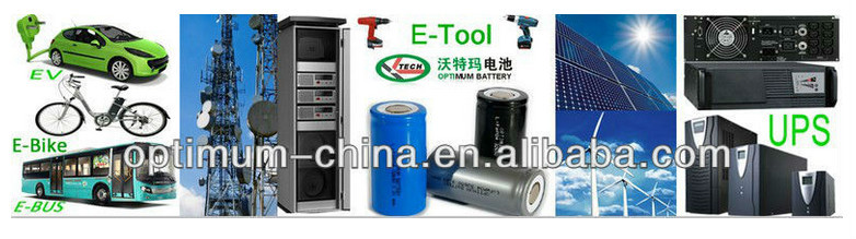 Forklift battery pack 48V 300Ah lithium ion lifepo4 battery with BMS