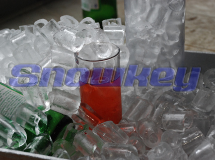 Hot sale New design High Quality tube ice machine price