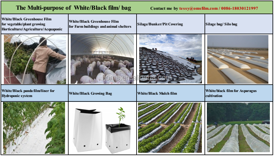 6mil 24ft x 100ft Black and white poly panda film